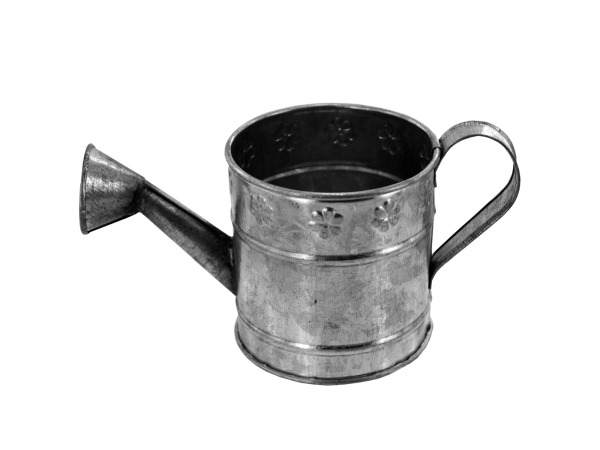 galvanized watering can decor