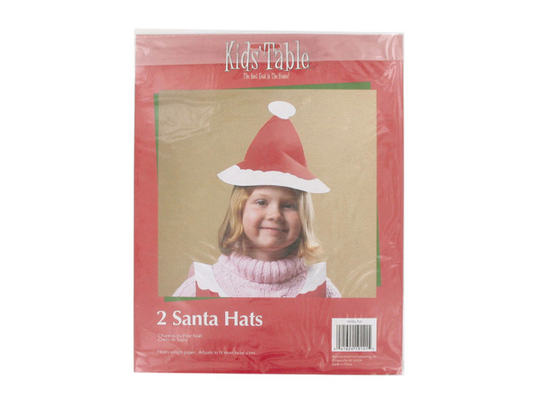 holiday fun 2 count santa hats