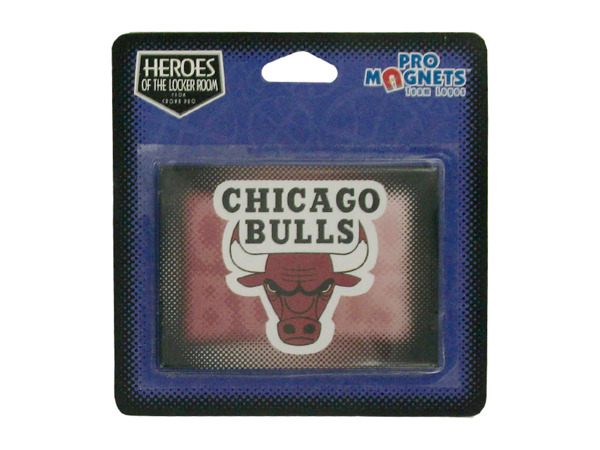 Chicago Bulls NBA Magnet