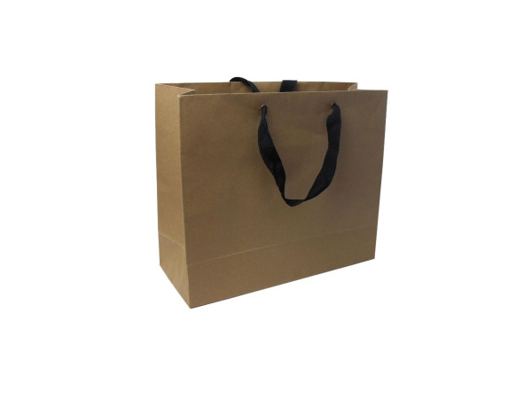 Large kraft gift bag